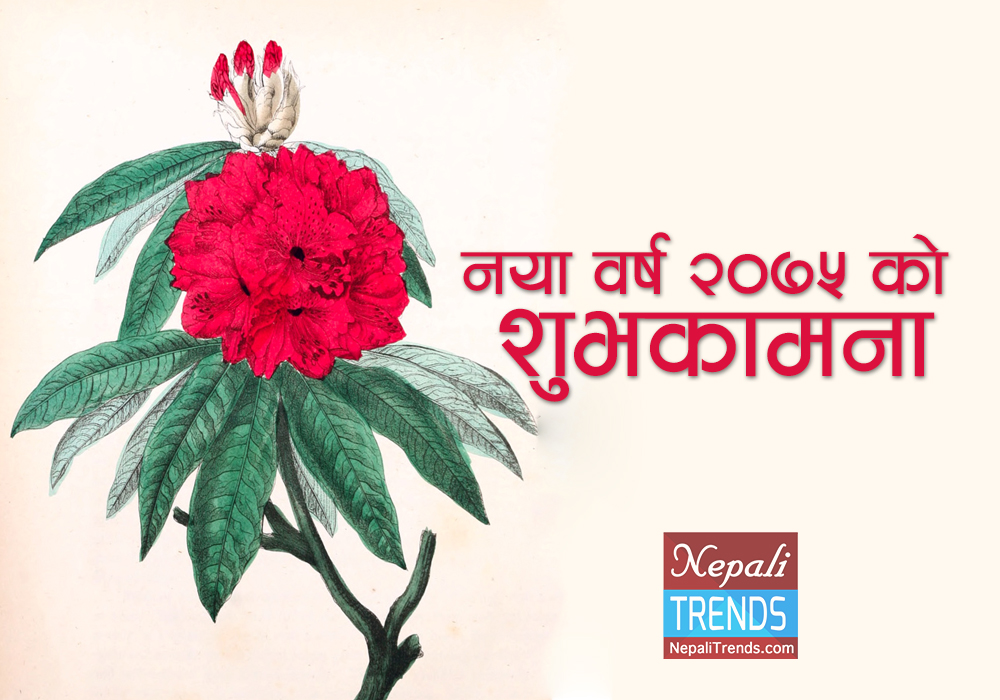 Happy New Year wish in Nepali