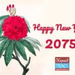 नयाँ वर्षको सन्देश । शुभकामना