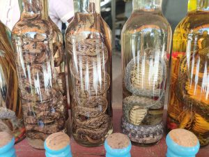 Snake whisky in Laos
