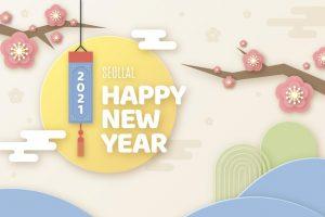 happy new year 2021 4